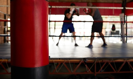 10 Weekly Drop-in Boxing Classes or Four Private Lessons at Spokane Boxing and Martial Arts (51% Off)