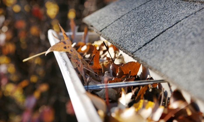 Unique Property Maintenance - Washington DC: Gutter Cleaning and Brightening from Unique Property Maintenance (Up to 60% Off). Two Options Available.