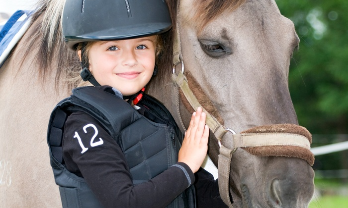 Zephyr's Way Stable - Zephyr's Way Stable: One or Three Private or One Semi-Private Horseback-Riding Lesson at Zephyr's Way Stable (Up to 61% Off)