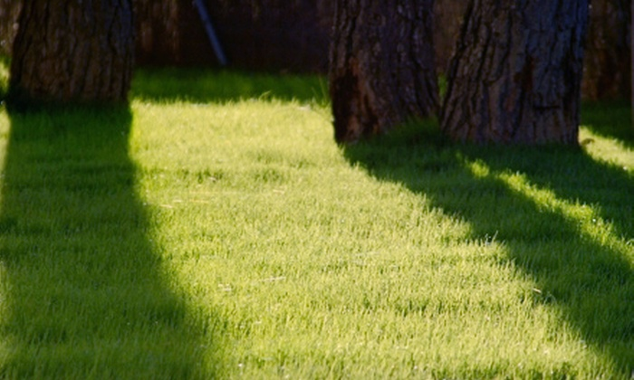 Bartlett Landscape Spray - Ewing Place: $35 for Lawn-Irrigation Winterization from Bartlett Landscape Spray ($75 Value)