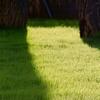 53% Off Lawn-Irrigation Winterization