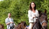 Highland Farm - Lanes Creek: $60 for Two Horseback-Riding Lessons or Trail Rides at Highland Farm in Monroe ($130 Value)