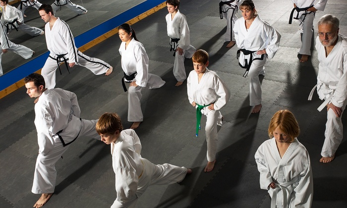 Championship Martial Arts - Multiple Locations: $34 for One Month of Unlimited Classes at Championship Martial Arts ($139 Value)
