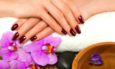Shellac Manicure $19, Shellac Spa Pedicure $24 or Both $43 at KT Nails Up to $75 Value