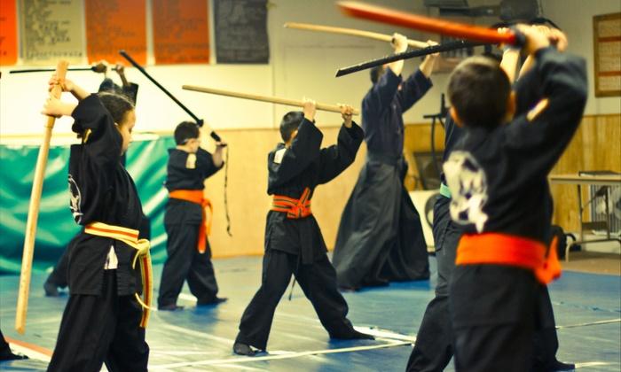 Passaic Bujinkan Buyu - Middle Village: One-Month Child or Adult Martial Arts Class Pass at Passaic Bujinkan Buyu (54% Off)
