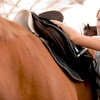 Up to 52% Off Riding Lessons at MD Barrel Horses