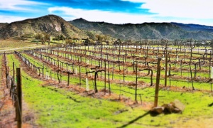 Orfila Vineyards & Winery: Wine Flights for Two or Four at Orfila Vineyards & Winery (58% Off)