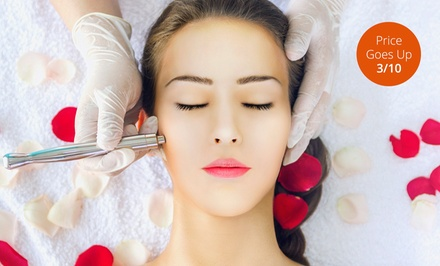 One or Three Signature Facials or Microdermabrasion Treatments (Up to 59% Off)