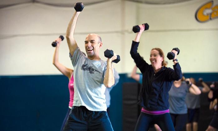 CATZ Sports Performance Training Centers - Needham: 10 or 15 Adult Sports-Performance Training Sessions at CATZ Sports Performance Training Centers (Up to 84% Off)