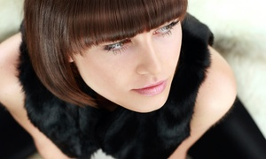 Pure Eco-Wellness Salon and Spa: Haircut with Rosemary Scalp Massage and Optional Highlights or Color at Pure Eco-Wellness Salon and Spa (Up to 44% Off)