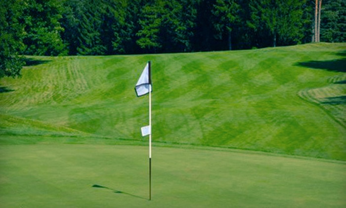 Timber Ridge Golf Club - Bath: One or Three Private Golf Lessons from PGA Pro Greg Beavers at Timber Ridge Golf Club in East Lansing (Up to 56% Off)