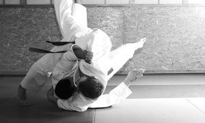 The Academy of Japanese Martial Arts: One or Three Months of Martial-Arts Classes at The Academy of Japanese Martial Arts(50% Off)