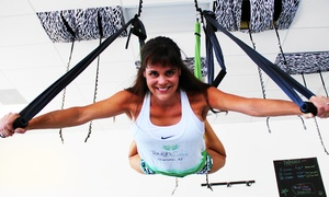 Tough Lotus, LLC.: Intro Class and Three or Seven Aerial-Fitness Classes at Tough Lotus (Up to 51% Off)