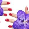 Up to 53% Off Nail Services at Pamper Nails