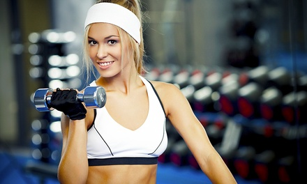 One-, Two- or Three-Month Gym Membership at Fat Al's Gym (Up to 69% Off)