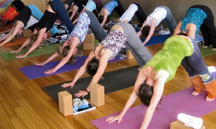 One Week or One Month of Unlimited Yoga Classes at Studio Bamboo Institute of Yoga (Up to 50% Off)