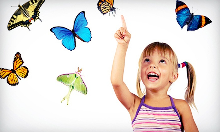 Long Island Exhibition Center - Long Island Aquarium: Butterflies and Birds! Exhibit Visit for One or Two at the Long Island Exhibition Center (Up to 52% Off)