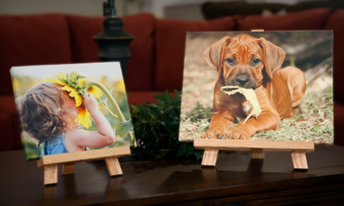 """Shutterbug Printing Specialties - Louisville: 8""""x10"""" or 11""""x14"""" Custom Canvas Easel Pic with Shipping from Shutterbug Printing Specialties (Up to 79% Off)"""