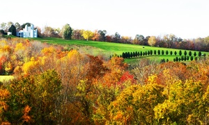 Vineyard Valley Golf Club: 9 or 18 Holes for Two with Cart Rental and Range Balls at Vineyard Valley Golf Club (Up to 55% Off)