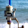 Up to 36% Off Beginner Fishing Classes