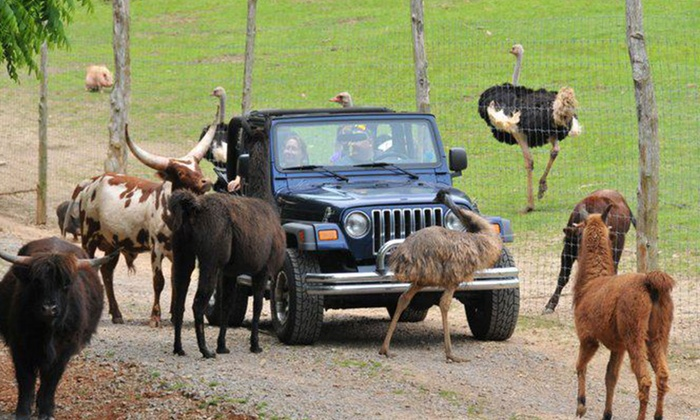 Circle G Ranch - Strawberry Plains: Drive-Thru Safari and Petting-Zoo Outing for Two at Circle G Ranch (Up to $18 Value)