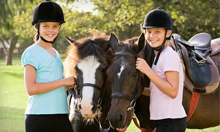 Sacred Cross Horse Services - Livermore-Pleasanton: Horseback-Riding Lessons at Sacred Cross Horse Services (Up to 66% Off). Four Options Available.