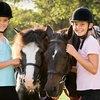 Up to 66% Off Horseback-Riding Lessons