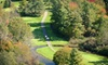 Brookside Golf & Grill - Northeast Grand Rapids: 18-Hole Round of Golf for Two or Four Including Cart and Range Balls Brookside Golf and Grill in Gowen (Up to 53% Off)