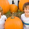 63% Off The Kids Expo Fall Festival