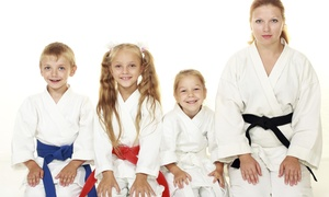 Jabari Martial Arts Academy: Four Weeks of Unlimited Martial Arts Classes at Jabari Martial Arts Academy (44% Off)