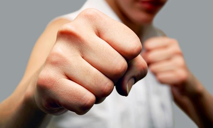Relson Gracie Jiu-Jitsu - Multiple Locations: Two or Six Weeks of Self-Defense Camp at Relson Gracie Jiu-Jitsu (Up to 82% Off)