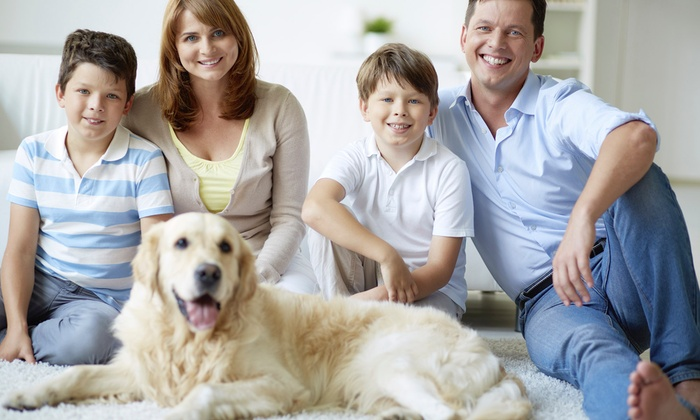 Champion Carpet Cleaning - Evansville: $39 for 300 Square Feet of Carpet Cleaning from Champion Carpet Cleaning ($80 Value)