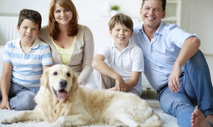 Champion Carpet Cleaning: $39 for 300 Square Feet of Carpet Cleaning from Champion Carpet Cleaning ($80 Value)