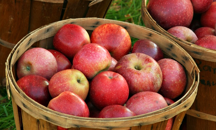 ProFarm Produce - Multiple Locations: 5- or 10-Pound Box of Apples or Pears at ProFarm Produce (Up to 47% Off)
