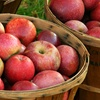 Up to 47% Off Fresh Apples or Pears