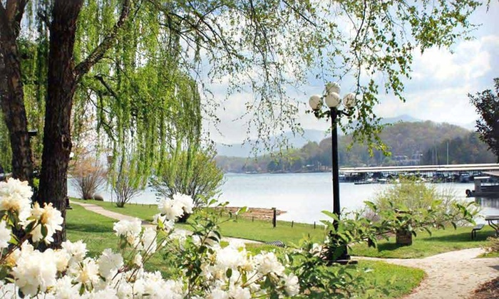 The Ridges Resort & Marina - Hiawassee, GA: Stay with Resort Credit at The Ridges Resort & Marina in Northern Georgia; Dates into March Available