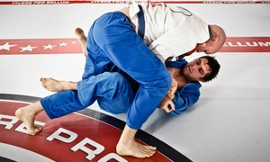 Thurston Academy of Martial Arts: One or Two Months of Unlimited Brazilian Jiu-Jitsu Classes at Thurston Martial Arts - Kingston (Up to 75% Off)