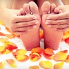 Up to 53% Off Nailcare in Winter Garden