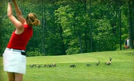 Lake Forest Golf Club - Lake Forest Golf Club in Ann Arbor