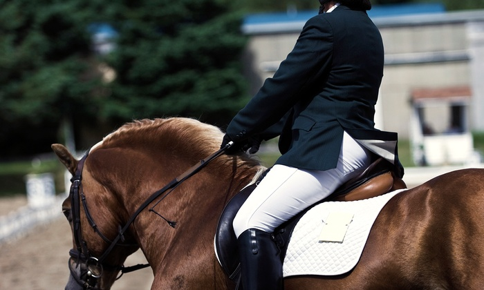 Destiny Equestrian - Destiny Equestrian: Introductory Horseback Riding Lesson for One, Two, or Four from Destiny Equestrian (Up to 78% Off)