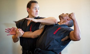 The Way Of The Shadow Martial Arts Academy: Ninjutsu Self-Defense Classes at The Way Of The Shadow Martial Arts Academy (Up to 81% Off). Three Options Available.