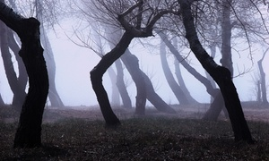 Spooks and Legends Haunted Tours: $16 for Choice of Tour for Two from Spooks and Legends Haunted Tours (Up to $28 Value)