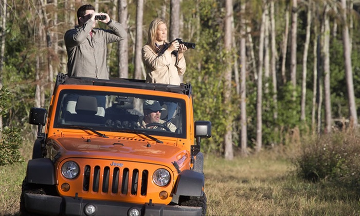 Orange Jeep Tours - Ave Maria: Guided Jeep Wildlife Tour for 4 or 6 from Orange Jeep Tours, by Collier Adventures in Ave Maria (Up to 62% Off)