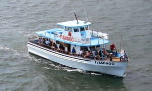 Flamingo Fishing: $28for a Four Hour-Deep Sea Fishing Trip from Flamingo Fishing ($40 Value)