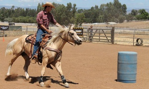 ML Performance Horses: Trail Ride Package or Riding Class for Two at ML Performance Horses ($70 Value)