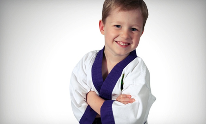 Just For Kicks Martial Arts Center - Briarcliff Manor: 10 or 20 Martial-Arts Classes for Kids and Adults at Just For Kicks Martial Arts in Fishkill (Up to 96% Off)