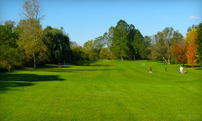 Meadowbrook Golf Club - Weedsport: 18 Holes of Golf with a Cart Rental and Drinks for Two or Four at Meadowbrook Golf Club (Up to 56% Off)