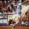 Up to Half Off Professional Bull-Riding Event