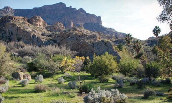 Boyce Thompson Arboretum - North Pinal: $29 for Family Membership to Boyce Thompson Arboretum ($60 Value)
