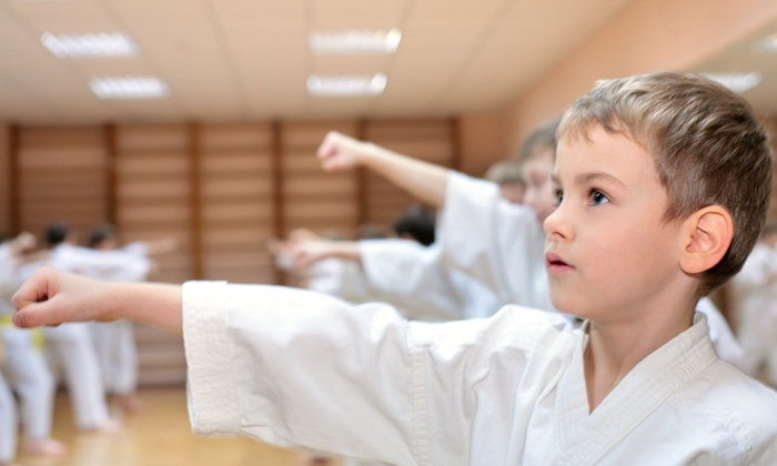 Go2Karate - Beaumont, TX: 10 or 16 Martial-Arts Classes and Uniform with Option for Test and a Graduation Belt at Go2Karate (94% Off)